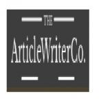 The Article Writers
